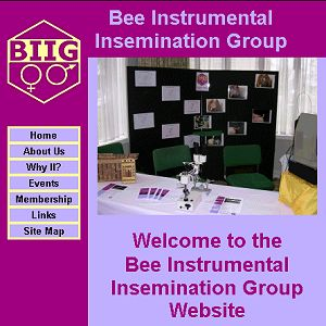 BIIG website front page